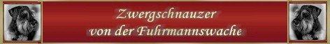zwergschnauzer_fuhrmannswache_mein_banner